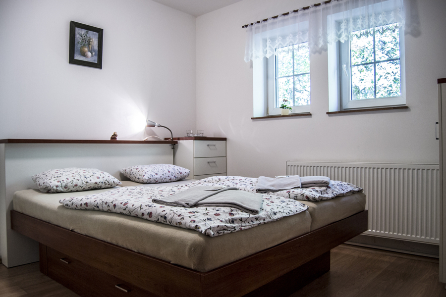DOUBLE ROOM WITHOUT BALCONY (223)