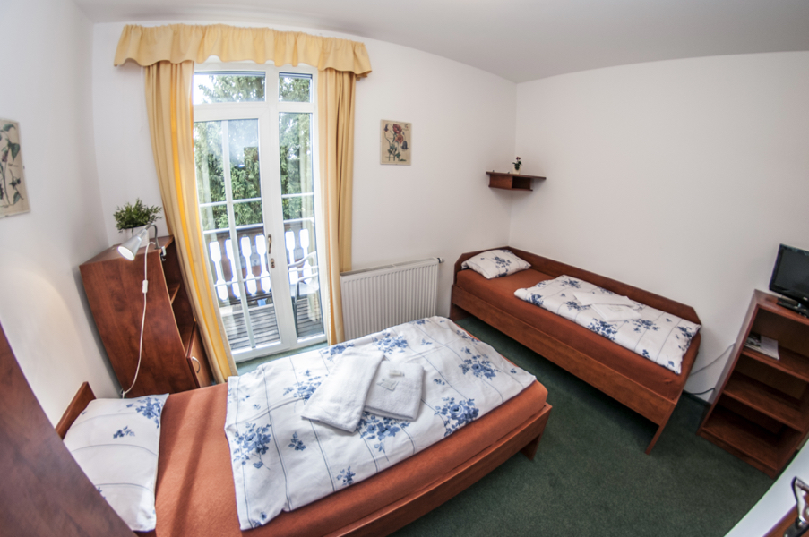 DOUBLE ROOM WITH EXTRA BED AND BALCONY (110)